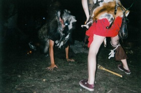 vlcice2002_05
